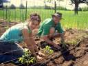 Volunteers Monica and Nick plant tomatoes