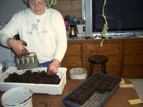 the first experiments by our now-expert soil block maker
